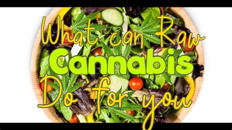 What can raw cannabis do for you?